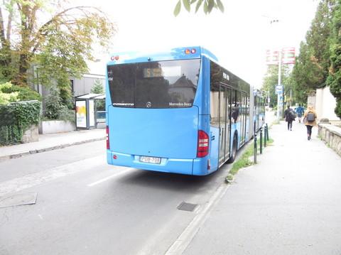 IMG_5655バス5番.JPG