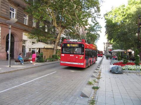 IMG_5751トロリーバス.JPG